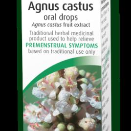 Buy Agnus cactus Dublin
